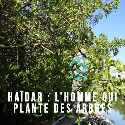 PROJECTION HAÏDAR : L'HOMME QUI PLANTE DES ARBRES